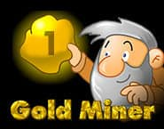 Aukso ieškotojas 1